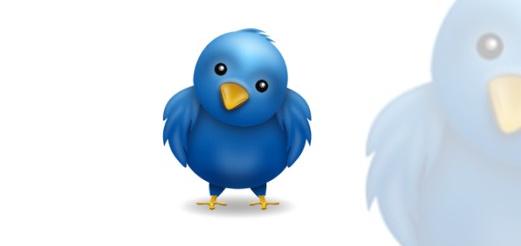 practika-twitter-bird